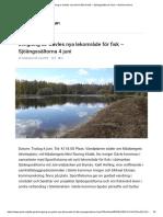 Invigning Av Gävles Nya Lekområde För Fisk – Sjöängssältorna 4 Juni – Gävle Kommun