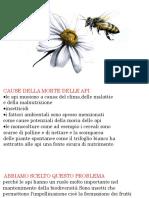 3ez - le api