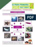 Animales Invertebrados y Vertebrados Para Tercero de Primaria