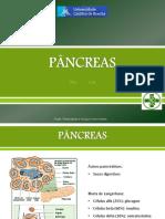 15 Pancreas
