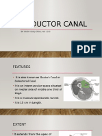 Adductor Canal latest.pptx