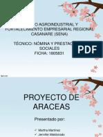 Proyecto de Araceas