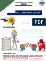 3 Metodologia Sistemica 2018 - 0 Otro