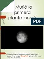 Murió la primera planta lunar exposicion ojos cerrados.pptx
