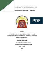 BORRADOR de TESIS Seguridad Ocupaciobnal y Salud-2019