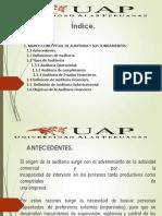 Semana 01 Marco Conceptual de La Aud. Financiera-1