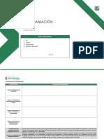 Programación Anual 2do Grado - Formato