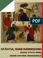 Maica Domnului in Invatatura Sfantului Ioan Damaschin