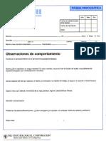 WAIS III - Protocolo (Resumen)