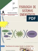 Fisiología de Los Sitemas Energéticos