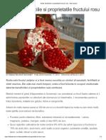 Rodia. Beneficiile Si Proprietatile Fructului Rosu - Sfat Naturist