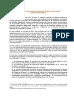 08-Proteccion Al Consumidor Financiero y Estatuto Del Consumidor
