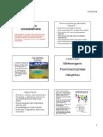 Reinos Archae Bacteria y Eubacteria