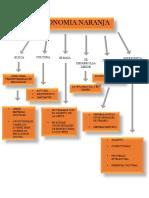 Mapa Conceptual Economia Naranja