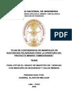 alarcon_mg.pdf
