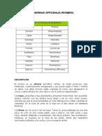 Caracterización de los aceites esenciales - Romero