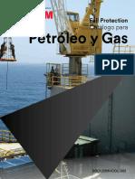 ARSEG-OIL-Y-GAS.pdf