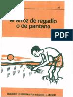 MEJORES CULTIVOS FAO 21