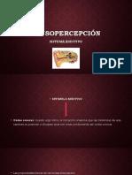 Sensopercepción 3