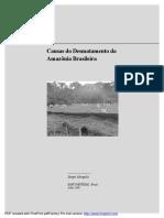 Desmatamento Na Amazonia