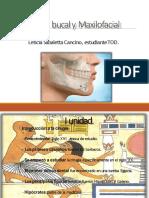 cirugabucalymaxilofacial-140318175530-phpapp02-convertido.pptx