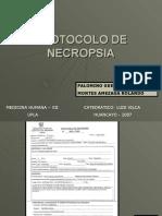 Protocolo de Necropsia 1