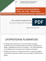T-28 Metabolismo Lipoproteinas