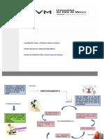 A3_MIR.PDF