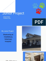 davis- junior project