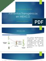 Alimentos Transgenicos en Mexico