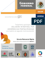 guia rapida oclusion intestinal.pdf