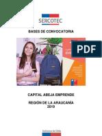 Bases Abeja Emprende 2019 Araucanía VF