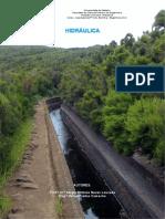 Hidráulica - Aulas Teóricas - Vol. I.pdf