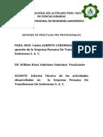 Informe de Prácticas Pre Profesionales