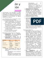 Inflamación y Reparación (1) (1)