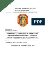 PROYECTO-TUNTA  2019-I.docx