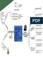 Mapa Mental Marco Teorico.