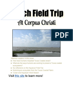 beach field trip newsletter