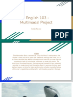 multimodal project