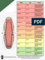 Meridian Dentistry Emotions