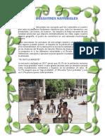 Los Desastres Naturales Articulo