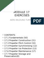 17 module