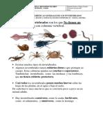 guas de invertebrados 2° año 2019