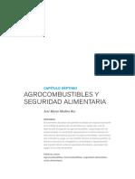Dialnet-AgrocumbustiblesYSeguridadAlimentaria-4184141