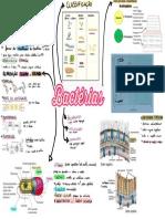 Caderno sem título.pdf