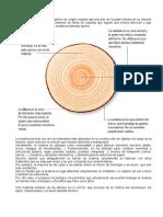 Lamaderayelpapel 131009034614 Phpapp02 (1)