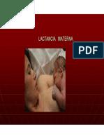 Lactancia Materna y Des Post Natal