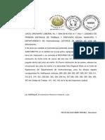 15 Decreto de Apelacion