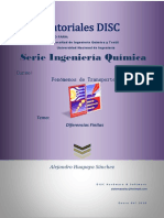 FT09-Diferencias Finitas.pdf