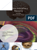 Memoria - Cortex Asociación